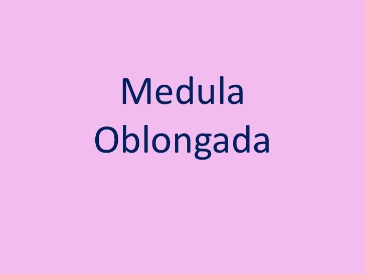 MedulaOblongada