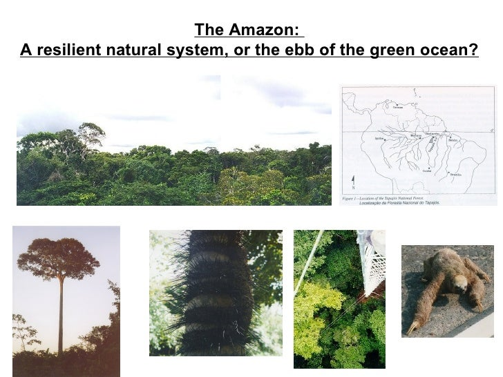 The Amazon:A resilient natural system, or the ebb of the green ocean?