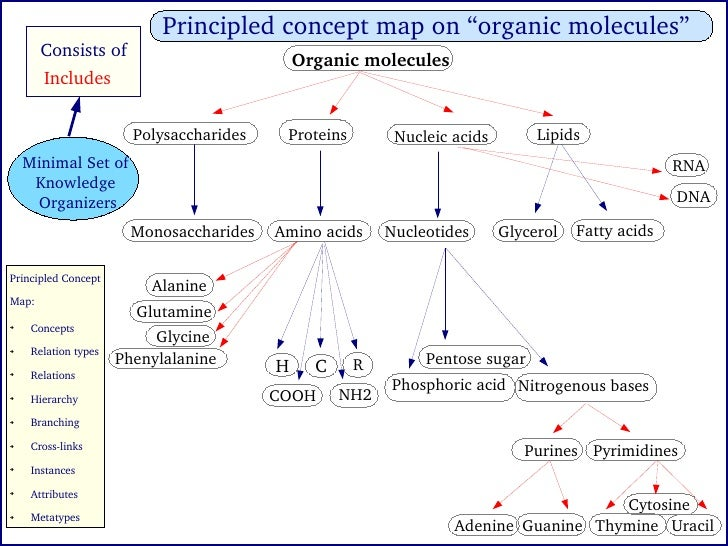 Organic Molecule Concept Map.Knowledge Organizers Of Cell Biology