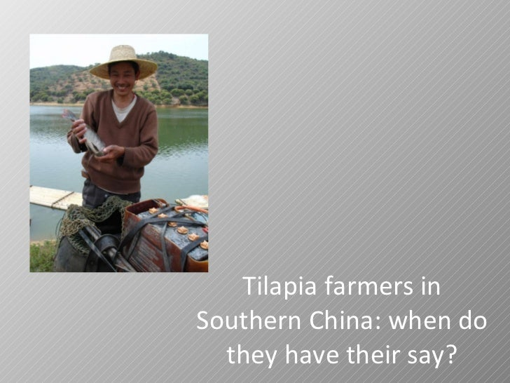 Tilapia farmers in Southern China: when do they have their say?