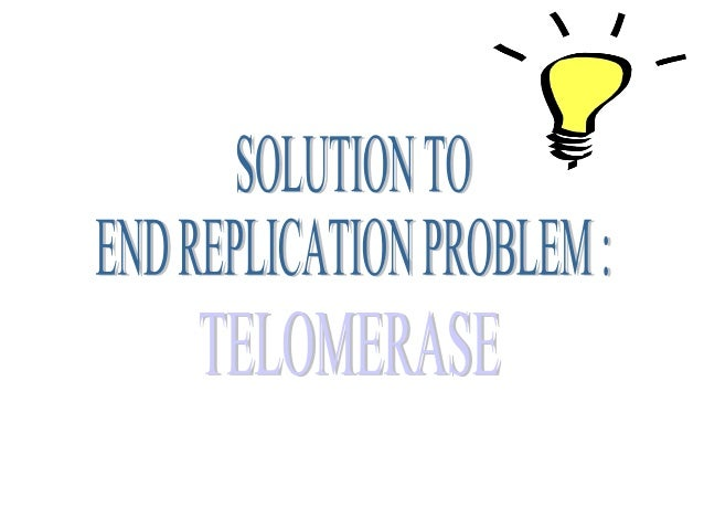 """Telomerase """"replenishes"""" the telomere """"cap"""" of the DNATelomerase """"replenishes"""" the telomere """"cap"""" of the DNA"""