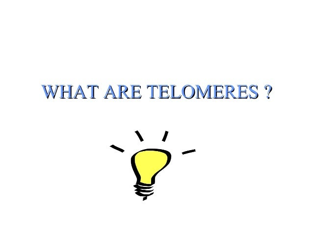 Telomeres are the ends of chromosomes