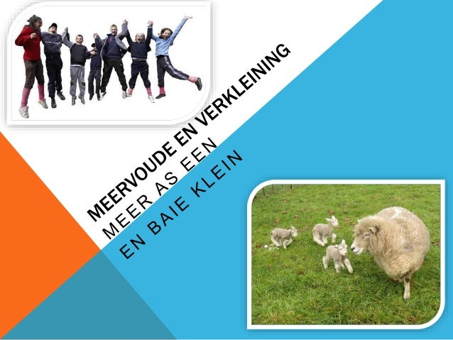 MEERVOUDE  Meer = more  So we make more.  In Afrikaans we add an –e  For family and people we add a –s  Go through the les...