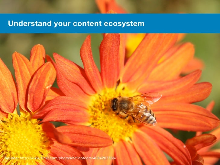 Understand your content ecosystem Source: http://www.flickr.com/photos/br1dotcom/4084207566/48