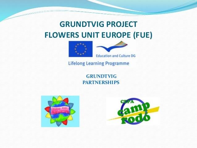 GRUNDTVIG PROJECT FLOWERS UNIT EUROPE (FUE) GRUNDTVIG PARTNERSHIPS