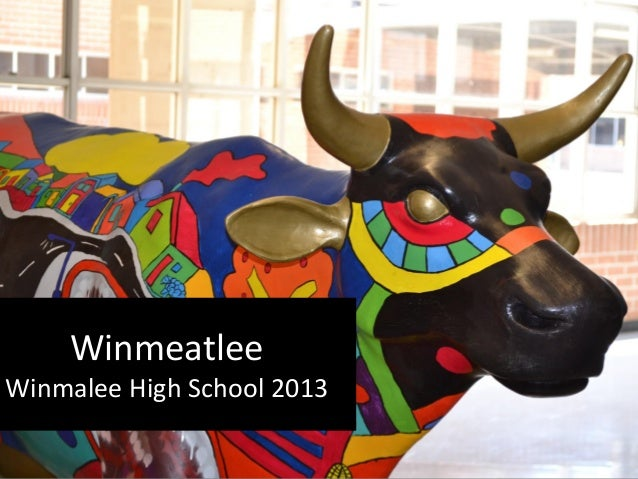 Winmeatlee Winmalee High School 2013