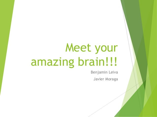 Meet your amazing brain!!! Benjamin Leiva Javier Moraga