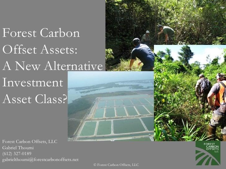 Forest Carbon Offset Assets: A New Alternative Investment Asset Class?  Forest Carbon Offsets, LLC Gabriel Thoumi (612) 32...