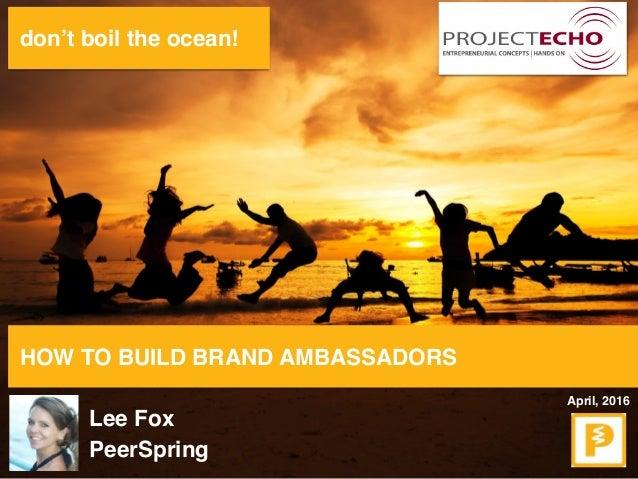 don't boil the ocean! HOW TO BUILD BRAND AMBASSADORS Lee Fox PeerSpring April, 2016