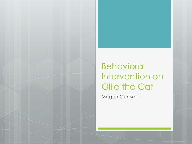 Behavioral Intervention on Ollie the Cat Megan Gunyou