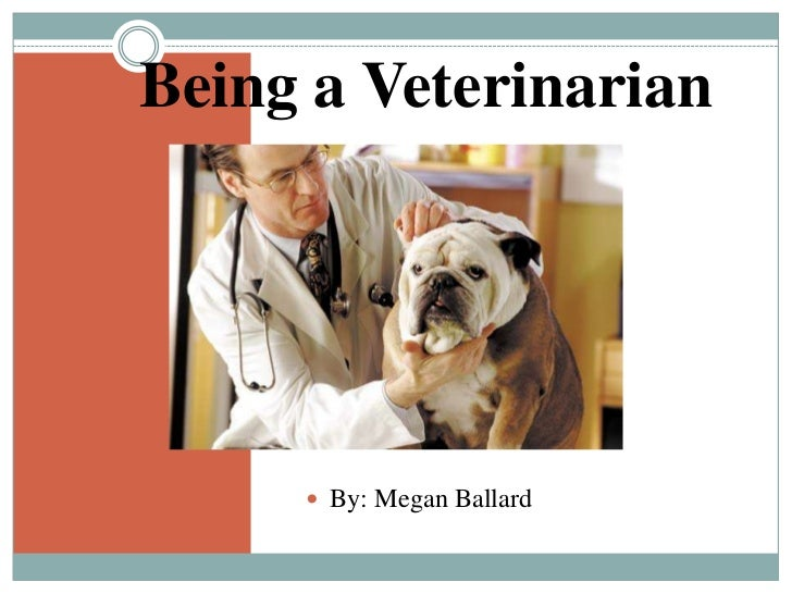 why become a veterinarian So you want to be a vet here's what it takes over the years i've become a bit of a cynic about the here's my advice on what you need to become a vet.