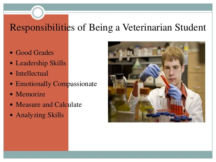 becoming a vet I remember being a young child and dreaming one day of becoming a  veterinarian the thought of working with animals brought me great joy,.