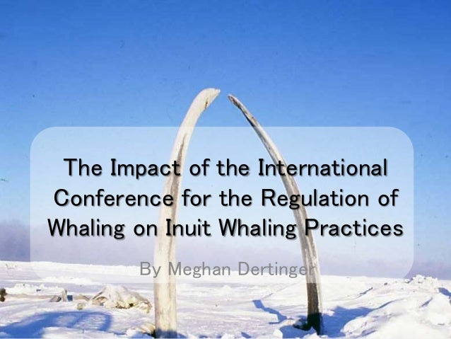 The Impact of the International Conference for the Regulation of Whaling on Inuit Whaling Practices By Meghan Dertinger