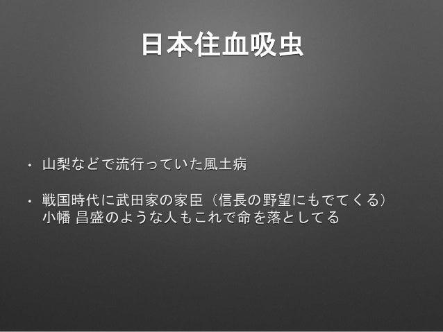 青木昆陽の墓 • 竜泉寺墓地 • 江戸時代中期の儒学者 • 日本にさつまいもを広めた