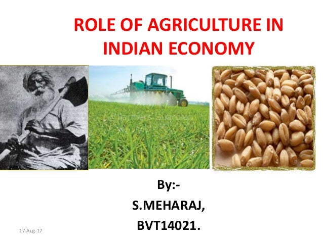 ROLE OF AGRICULTURE IN INDIAN ECONOMY By:- S.MEHARAJ, BVT14021.17-Aug-17