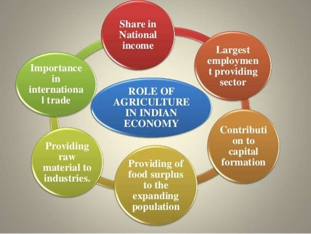 Image result for role of agriculture in indian economy