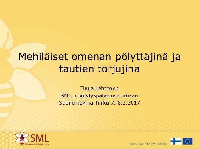 Mehiläiset omenan pölyttäjinä ja tautien torjujina Tuula Lehtonen SML:n pölytyspalveluseminaari Suonenjoki ja Turku 7.-8.2...