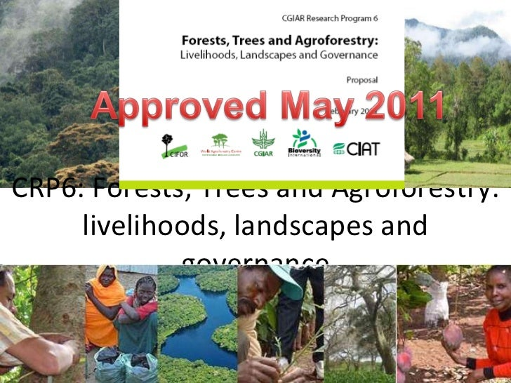 CRP6: Forests, Trees and Agroforestry: livelihoods, landscapes and governance