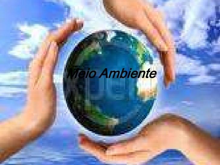 Meio Ambiente<br />