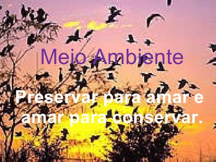 Meio Ambiente Preservar para amar e  amar para conservar.