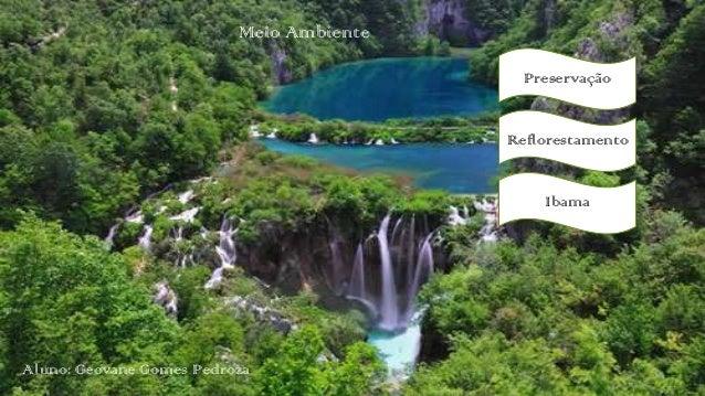 Meio Ambiente Preservação  Reflorestamento Ibama  Aluno: Geovane Gomes Pedroza