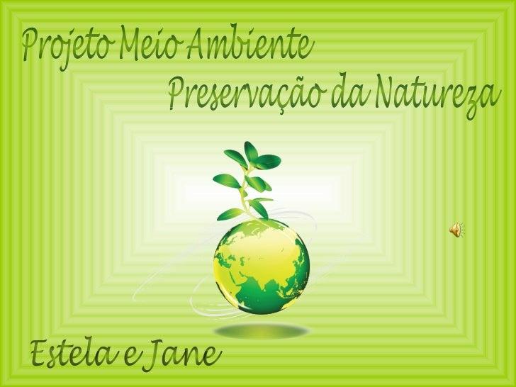 Projeto Meio Ambiente Estela e Jane Preservação da Natureza