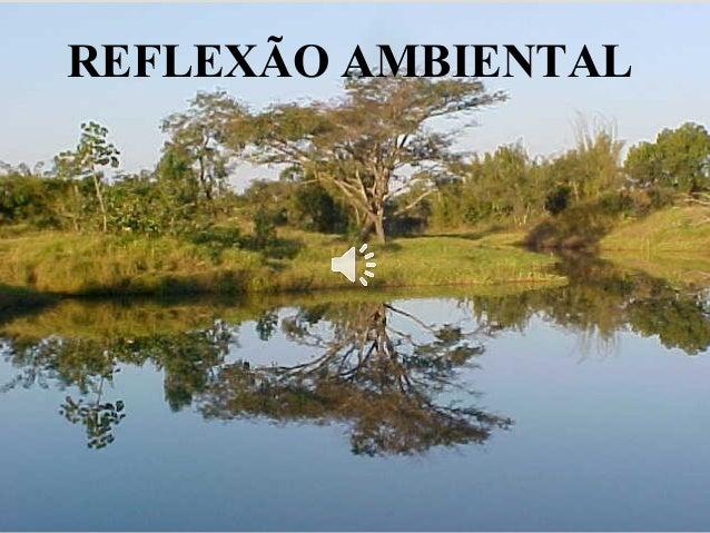 1  REFLEXÃO AMBIENTAL