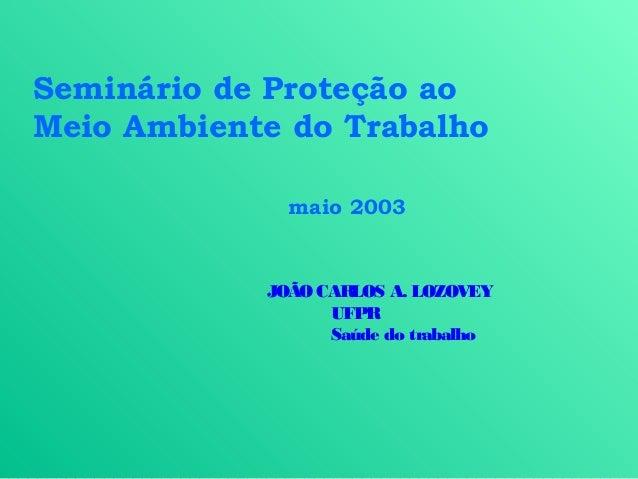 Seminário de Proteção aoMeio Ambiente do Trabalho              maio 2003            JOÃO CARLOS A. LOZOVEY                ...