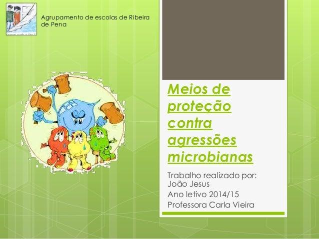 Meios de proteção contra agressões microbianas Trabalho realizado por: João Jesus Ano letivo 2014/15 Professora Carla Viei...