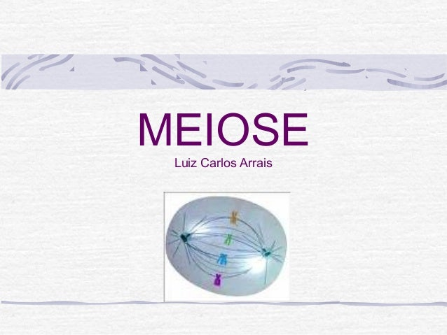 MEIOSELuiz Carlos Arrais