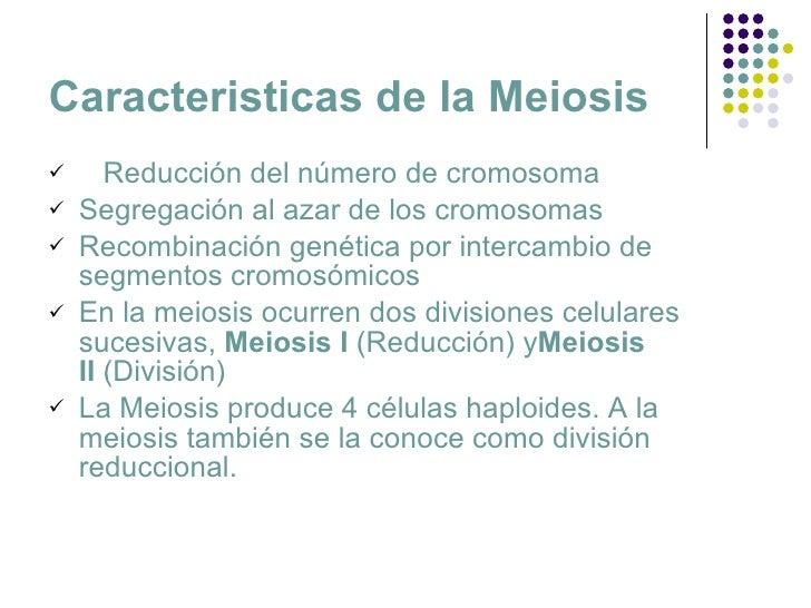 Meiosis Slide 2