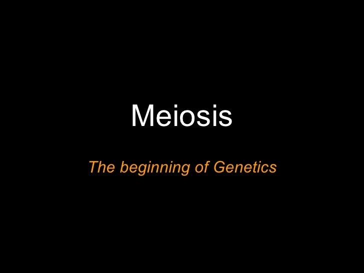 Meiosis The beginning of Genetics