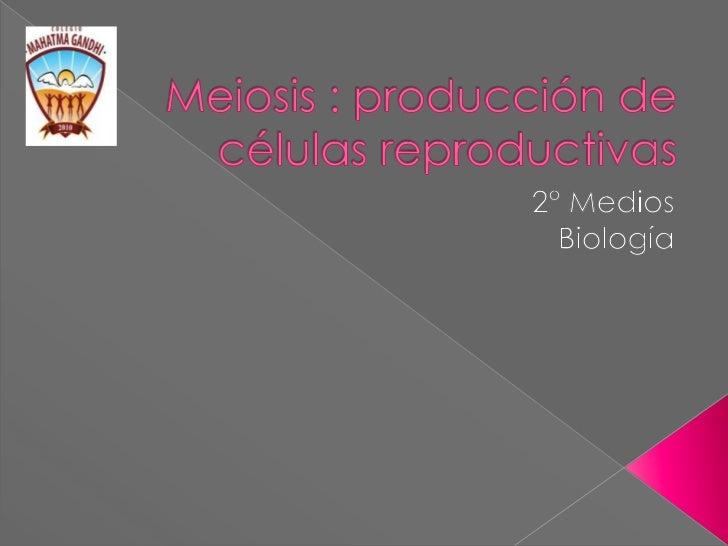 Meiosis : producción de células reproductivas<br />2° Medios<br />Biología<br />