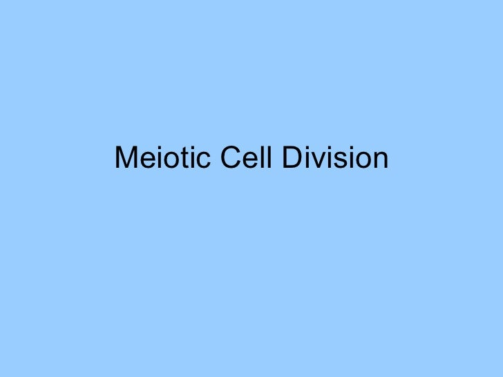 Meiotic Cell Division