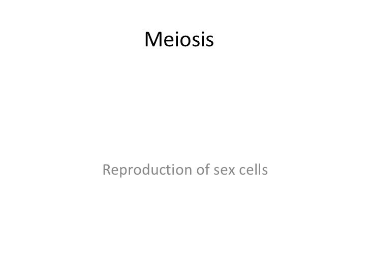 MeiosisReproduction of sex cells