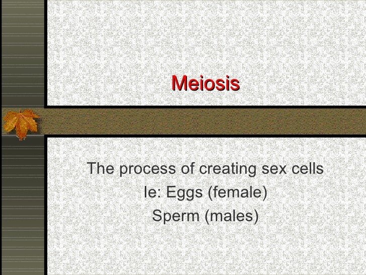 Meiosis The process of creating sex cells Ie: Eggs (female) Sperm (males)