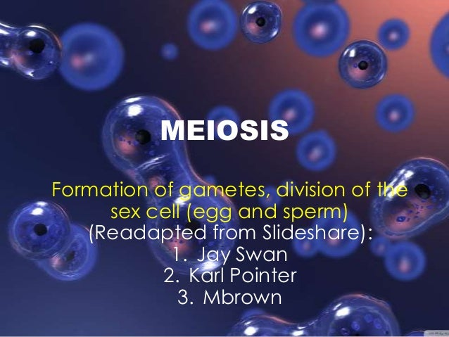 MEIOSIS Formation of gametes, division of the sex cell (egg and sperm) (Readapted from Slideshare): 1. Jay Swan 2. Karl Po...