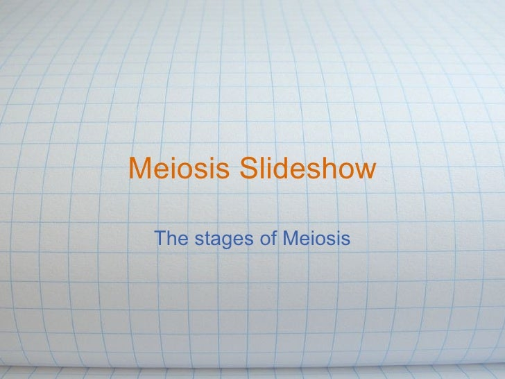 Meiosis Slideshow The stages of Meiosis