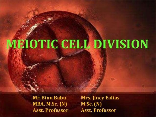MEIOTIC CELL DIVISION Mr. Binu Babu MBA, M.Sc. (N) Asst. Professor Mrs. Jincy Ealias M.Sc. (N) Asst. Professor