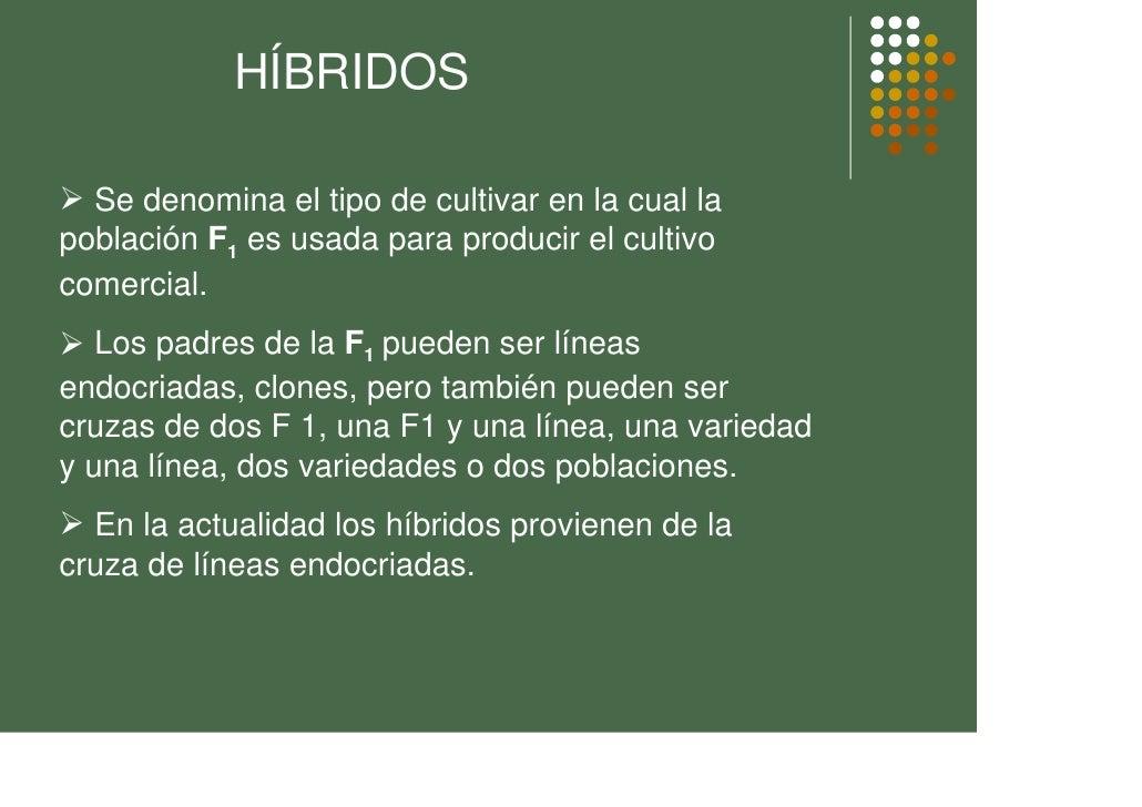 HÍBRIDOS    Se denomina el tipo de cultivar en la cual la población F1 es usada para producir el cultivo comercial.    Los...