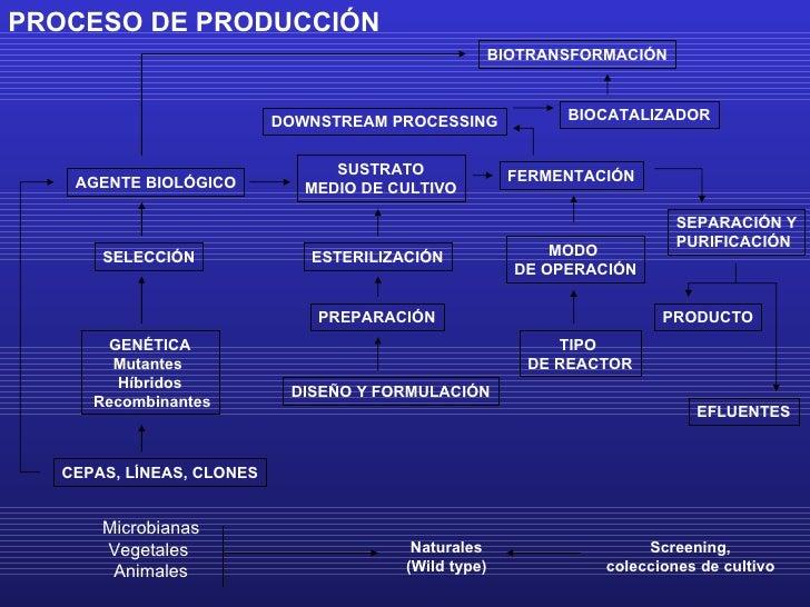 PROCESO DE PRODUCCIÓN CEPAS, LÍNEAS, CLONES GENÉTICA Mutantes  Híbridos Recombinantes SELECCIÓN AGENTE BIOLÓGICO Microbian...
