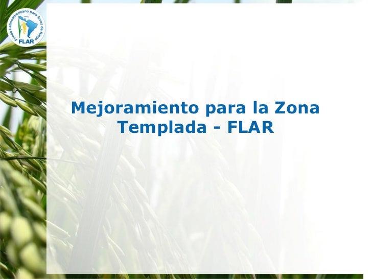 Mejoramiento para la Zona    Templada - FLAR