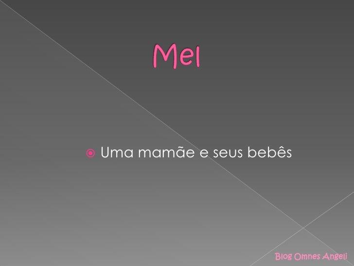 Mel<br />Uma mamãe e seus bebês<br />Blog OmnesAngeli<br />