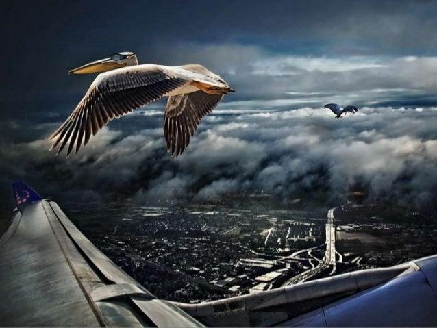 Melancholic Photography By Piet Flour