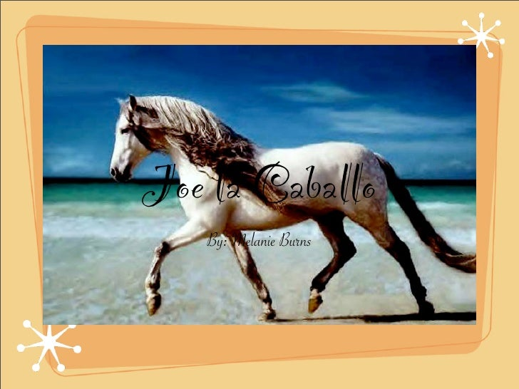 Joe la Caballo    By: Melanie Burns