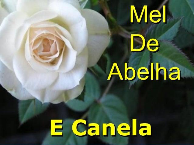 Mel De Abelha E Canela