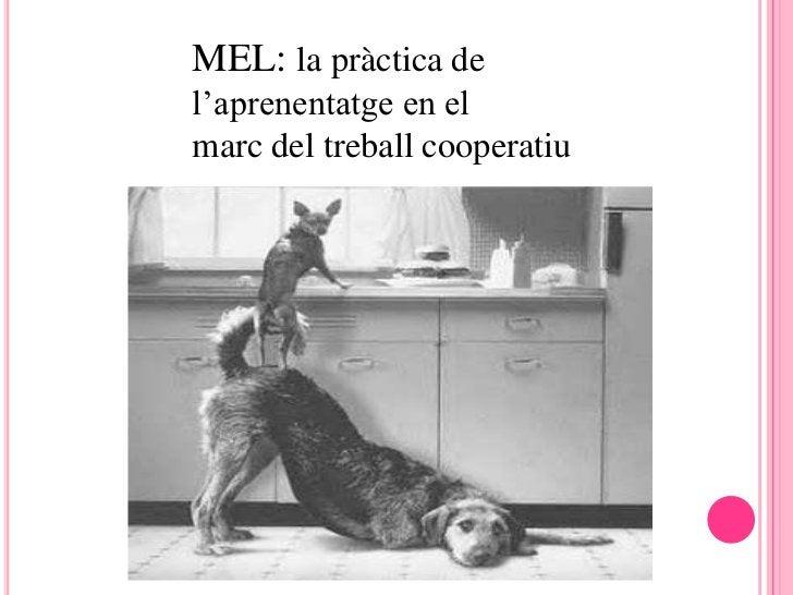 MEL: la pràctica del'aprenentatge en elmarc del treball cooperatiu