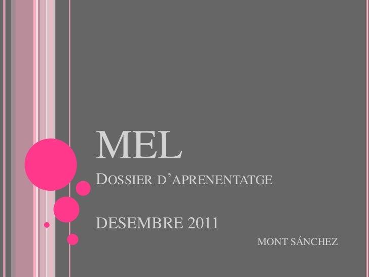 MELDOSSIER D'APRENENTATGEDESEMBRE 2011                    MONT SÁNCHEZ