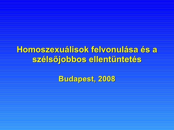 Homoszexuálisok felvonulása és a szélsőjobbos ellentüntetés Budapest, 2008