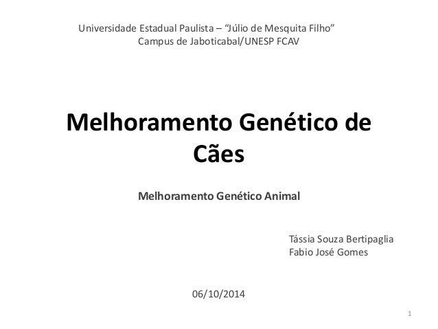 Melhoramento Genético de Cães  Melhoramento Genético Animal  Tássia Souza Bertipaglia Fabio José Gomes  Universidade Estad...